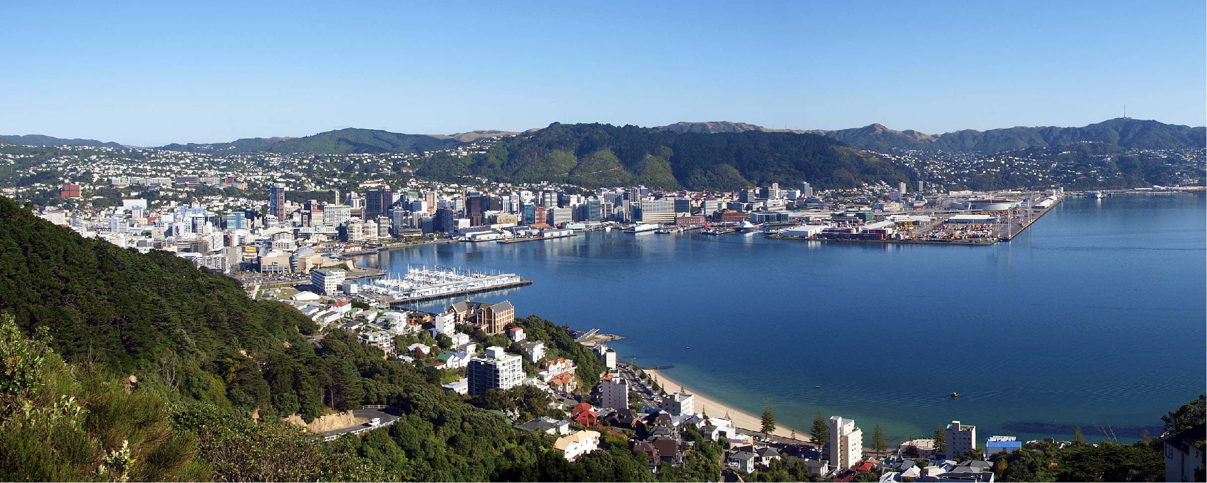 Wellington Panorama View