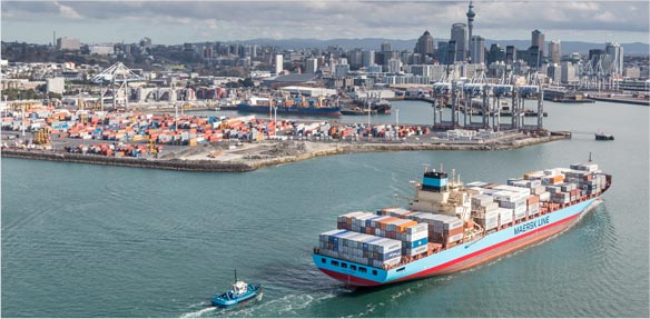 moving-to-new-zealand-cargo-ship